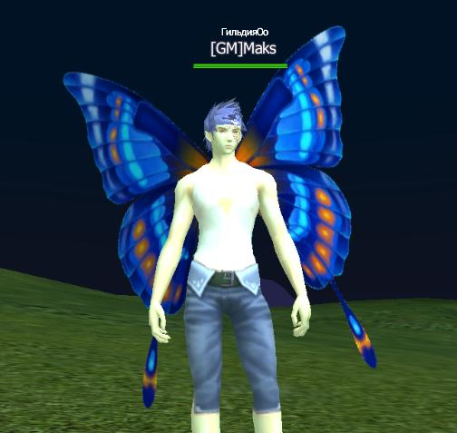 Крылья синий бабочки