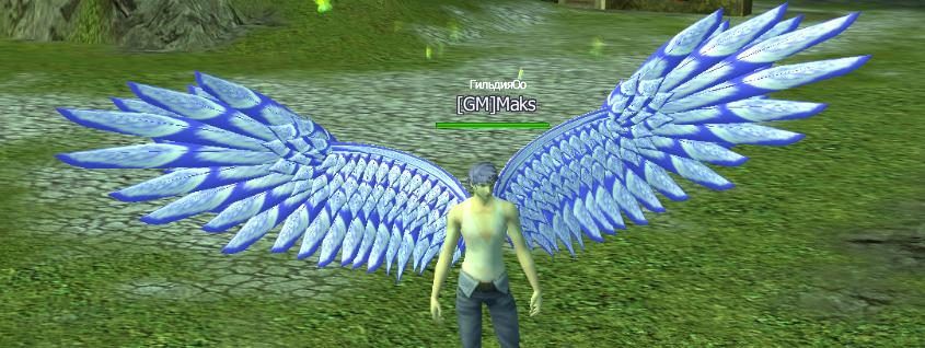 Бело-голубые Крылья Архангела